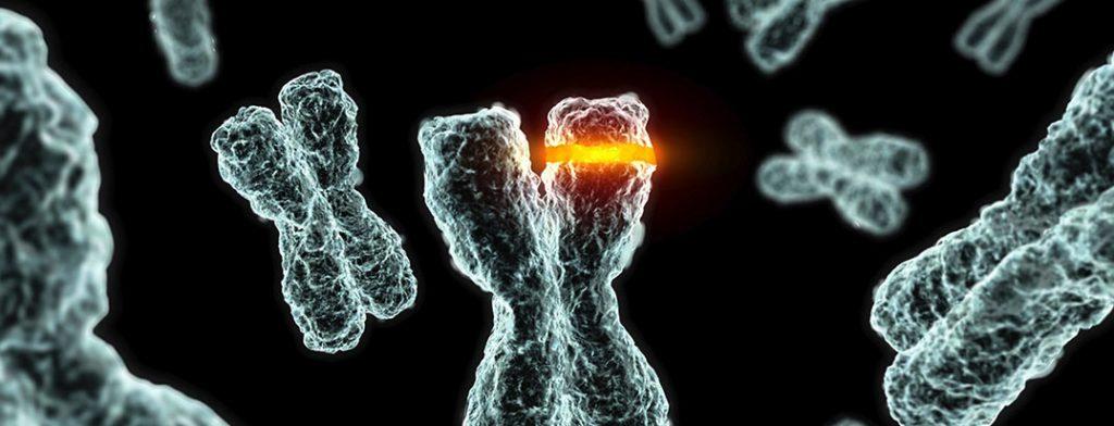 肺癌:因子突變