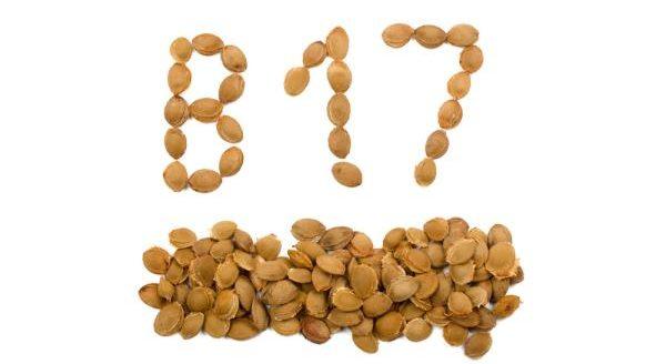 食物中的防癌抗癌物質:維生素B17