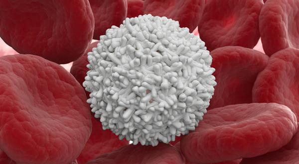 化療有副作用要如何處理?白血球降低的照護