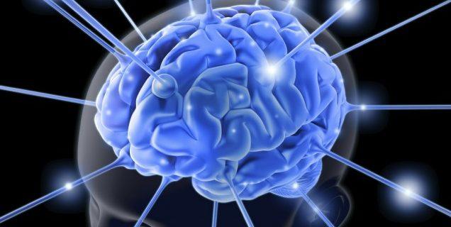 過量的情緒會通過大腦破壞自主神經的運作