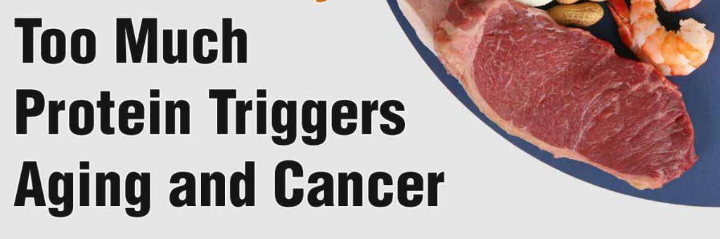 動物性蛋白質攝取太多會招來癌症