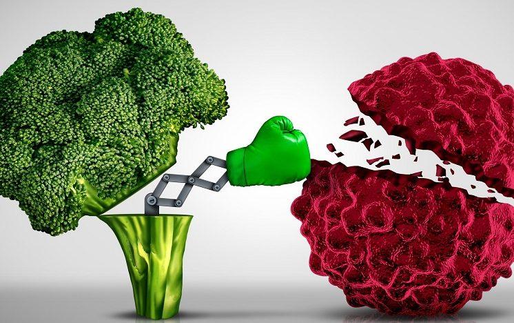 植物性氨基酸的食物及天然的抗癌維生素抑制了癌細胞的生長